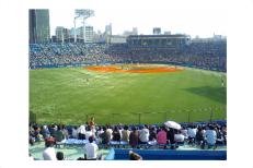 プロ野球公式戦。株主優待証|ヤクルト本社株主優待